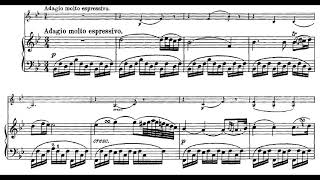 Beethoven: Violin Sonata no. 5 in F major, op. 24