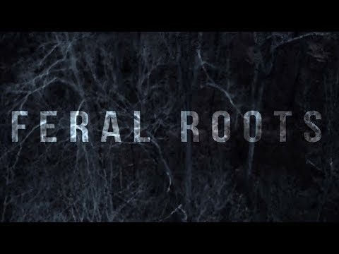 Feral Roots