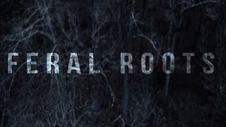 Rival Sons   Feral Roots (Official Visualizer)