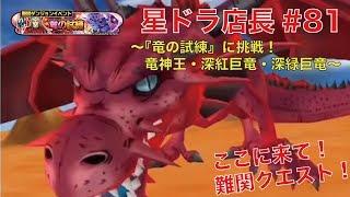 【星ドラ実況#81】店長が『竜の試練』に挑戦してみた!