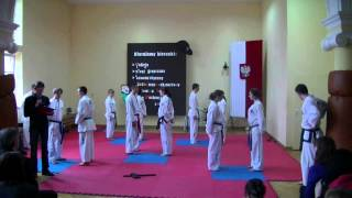 preview picture of video 'Pokaz Taekwon-do w czasie dni otwartych  Zespołu Szkół w Janowie Podlaskim część 1'