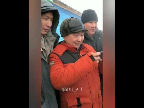 Видеофакт: В Якутии охотник добыл двух серых хищников