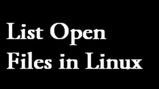How to use the Linux lsof command to list open files