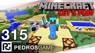 NÁVRH CESTY V ZOO | Minecraft Let's Play #315