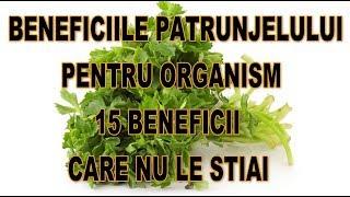 Beneficiile Patrunjelului pentru organism 15 Beneficii care nu le stiai