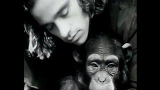 Eros Ramazzotti - La Vida Todavía