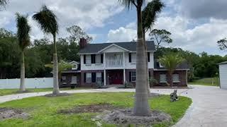 Royal Palms Planted and Guaranteed