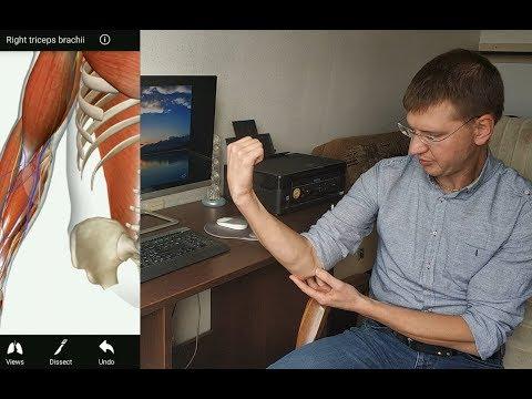 Боли в локтевом суставе. Эпикондилит. Что это такое и как лечить?