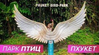 Парк Птиц, Пхукет, Таиланд. Bird Park 🐥