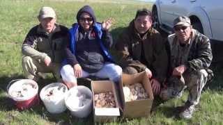 Весенние степи Казахстана: В поисках Белого Степного Гриба