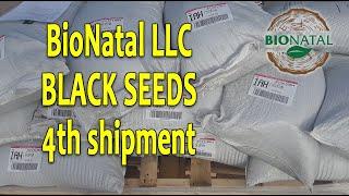 Forth black seeds shipment