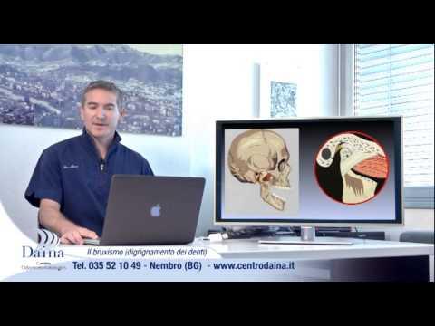 Anatomia della colonna vertebrale umana cervicale