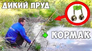 Как ловят карася в пруду