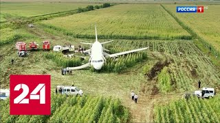 Чудо на кукурузном поле: 93 секунды после столкновения самолета со стаей чаек - Россия 24