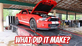 Adding Boost, Whine, and Power to my GT500
