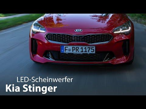 Kia Stinger: LED-Scheinwerfer Test [4K] - Autophorie