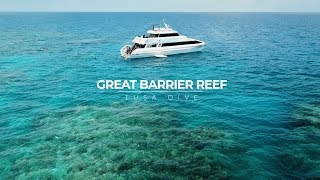 Snorkeling the Outer Great Barrier Reef