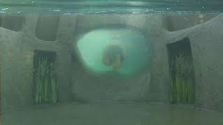 Building Most Secret Hidden Underground House and Swimming Pool Underwater