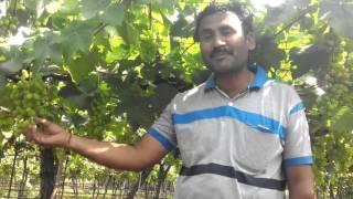 Kokangaon Vijay Gaike Bullet