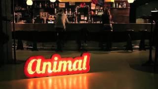Animal - Dos Desconeguts