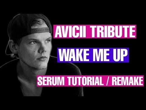 Avicii Tribute -