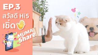 MUMA Share EP 3 : การสอนน้องหมา แมว สวัสดี Hi5 เชิ่ด! 😎