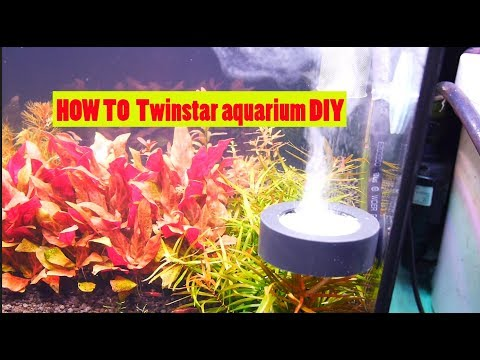 HOW TO Twinstar aquarium diy