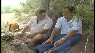 Documental de jilgueros!!fringílidos.....redes y liga