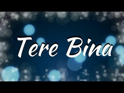 Tere Bina Lyrics - Zaeden ft. Amyra Dastur, Kunaal Verma