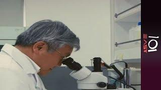 🇹🇼 Taiwan's Secret Cancer | 101 East