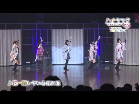 【声優動画】ハナヤマタのライブ映像が発売決定