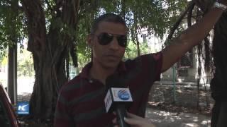 Alto reconocimiento a la enfermera en Cuba
