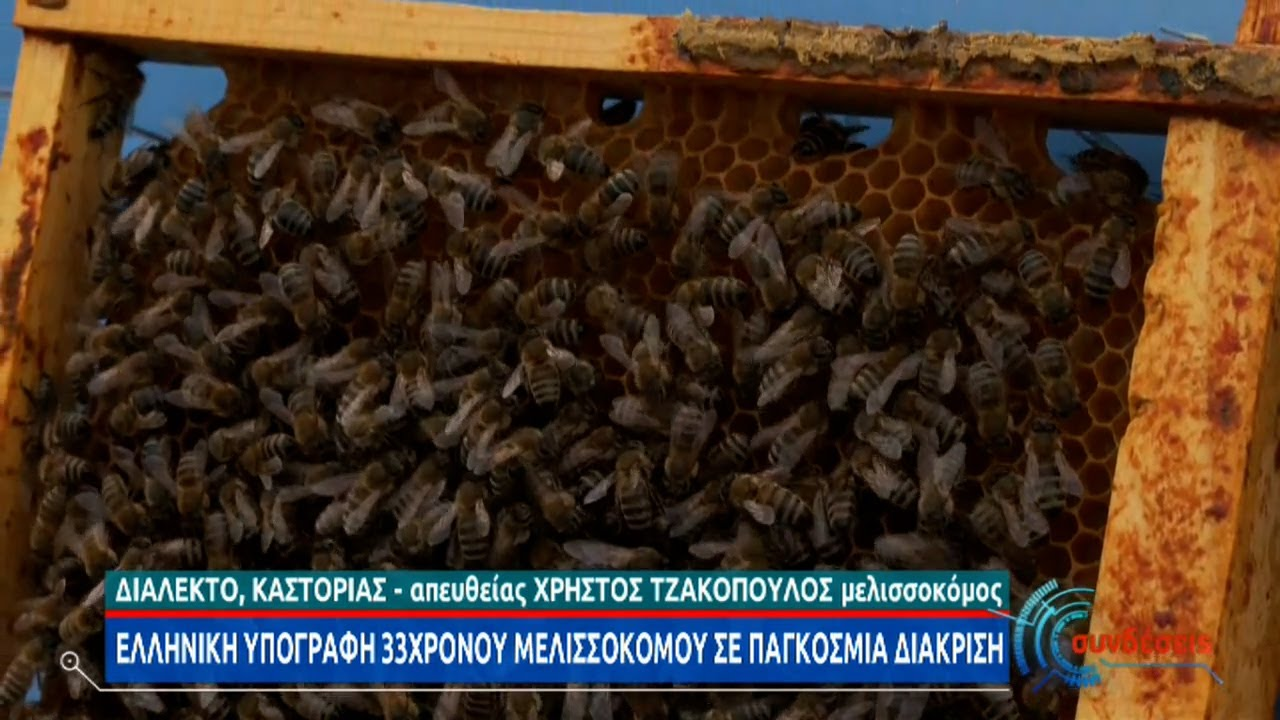 Ένα μέλι από την Καστοριά ανάμεσα στα καλύτερα του κόσμου | 07/04/2021 | ΕΡΤ