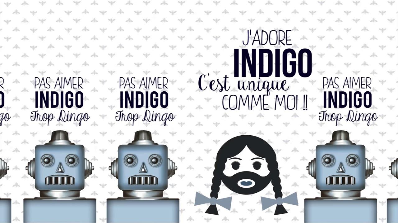 Collection Indigo - Préjugé n°2