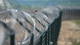Венгрия строит новую «умную» стену от беженцев