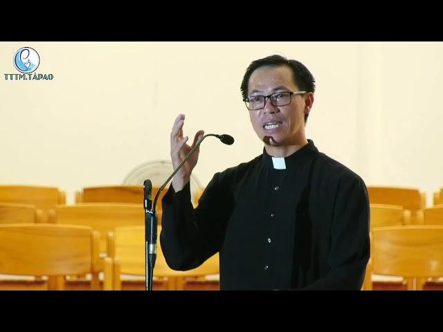 Video giáo lý Năm Thánh bài số 8