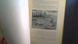 1910TheNewAmericaAndTheFarEast,Hawaii,HenryCabotLodge,G.WaldoBrowne