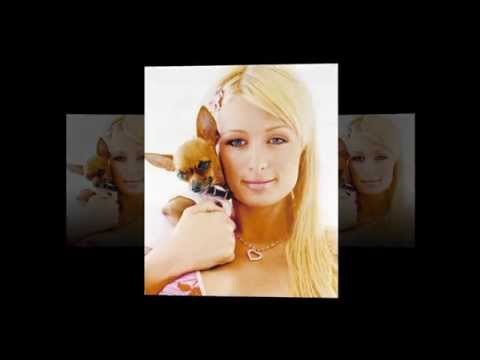 Immagini video sesso Winx