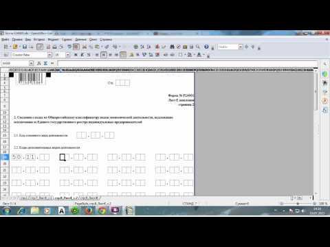 Форма Р24001 (образец заполнения)