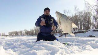 Обь зима рыбалка