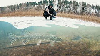 Первый лед 2019-2020. рыбалка на жерлицы