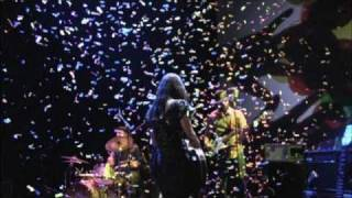 Feist - Look At What The Light Did Now - DVD trailer