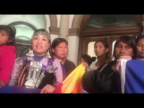 Video: Pueblos Originarios: mujeres Indígenas reclaman en el Ministerio del Interior