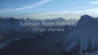 Salmon from Norway - Origin Matters
