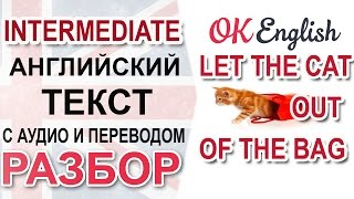 Let the Cat out of the Bag. Английский текст среднего уровня. Уроки английского языка