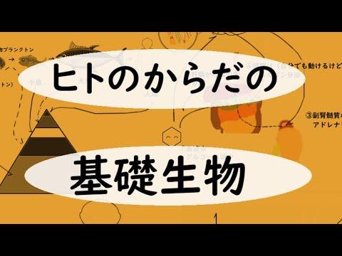 , title : '7/16 ⑩基礎生物(栄養)