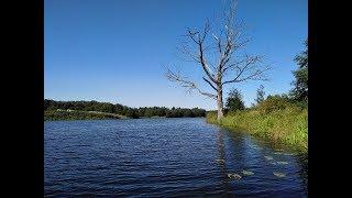 Рыбалка в ярославской области озера варегово
