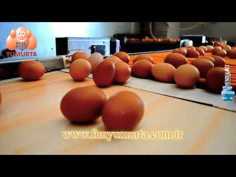 Fun Yumurta Tanıtım Filmi - HendekNet