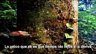 Canción De La Tierra (Earth Song)[Subtitulada Español]