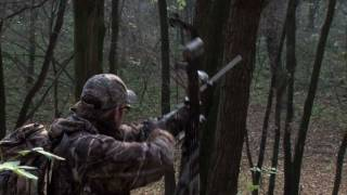 preview picture of video 'The Grafenwald Hunt (with a 100 lbs compound)'